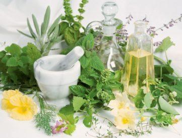 4 +1 lenyűgöző tavaszi gyógynövény