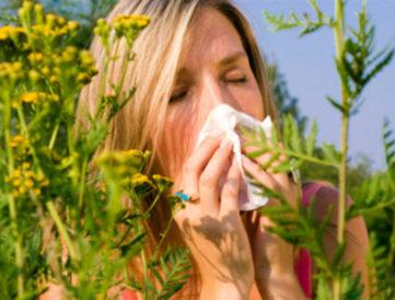 Kezeld gyógynövényekkel az allergiás tüneteket!
