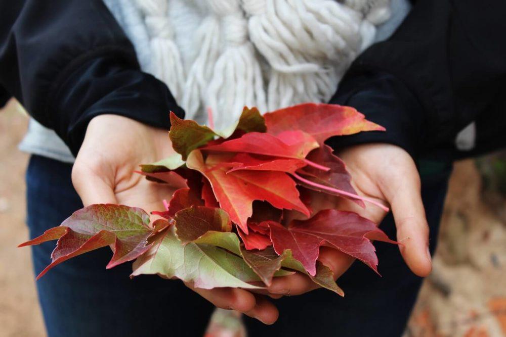 Mit tehetünk az ízületi fájdalom ellen ősszel?