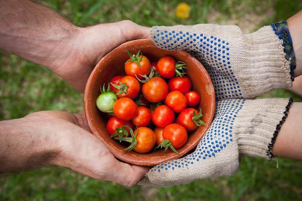 A kertészkedés is lehet testedzés